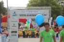 Seenlandmarathon 2014