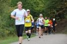 Seenlandmarathon 2015 - Sonntag