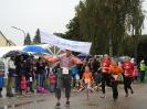 Seenlandmarathon 2016 - Bambinilauf_43