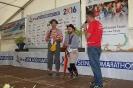 Das Team Seenlandmarathon 2016_33