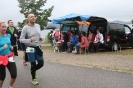Das Team Seenlandmarathon 2016_52