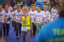 Seenlandmarathon 2017 - Die Läufe
